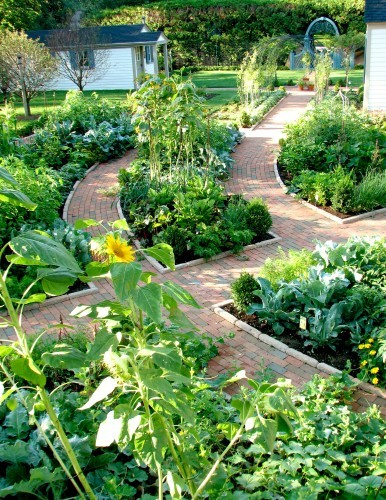 Raised garden beds photos and ideas for Raised veggie garden designs