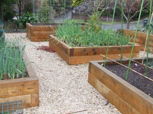 Raised garden beds - photos and ideas